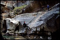 Canyoneers in wetsuits rappel down walls of the Subway. Zion National Park, Utah, USA. (color)