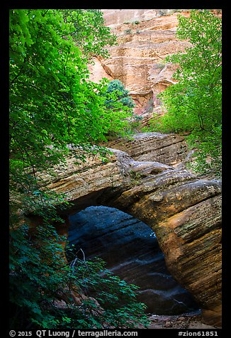 Arch and wall, Hidden Canyon. Zion National Park (color)