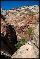 Woman hiker clinging to cable on Hidden Canyon trail. Zion National Park ( color)