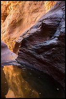 Glowing canyon wall reflected in pool, Mystery Canyon. Zion National Park ( color)