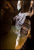 Slot canyon reflections, Pine Creek Canyon. Zion National Park ( color)