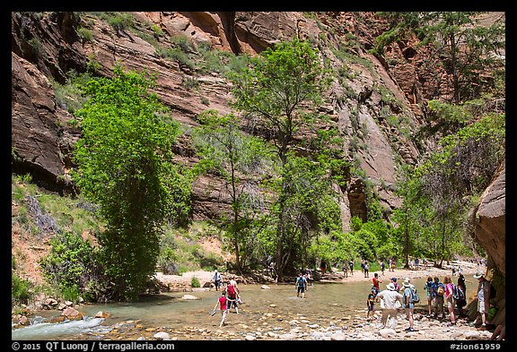 Crowds at the start of the Narrows hike. Zion National Park (color)