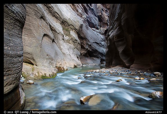 Virgin River flows over boulders under soaring walls of the Narrows. Zion National Park (color)