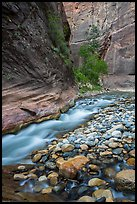 Colorful boulders and narrow channel of the Virgin River. Zion National Park ( color)