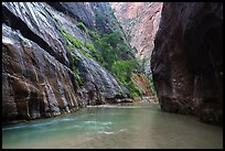 Placid and wide section of Virgin River between cliffs, the Narrows. Zion National Park ( color)