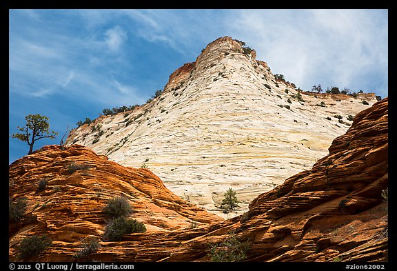 White cliffs towering over red cliffs, East Zion. Zion National Park (color)