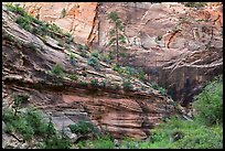 Echo Canyon. Zion National Park ( color)