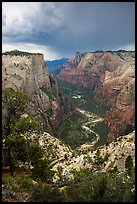 Zion Canyon from above under storm light. Zion National Park ( color)