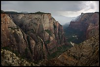 Zion Canyon during afternoon thunderstorm. Zion National Park ( color)