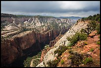North Zion Canyon from above, Observation Point. Zion National Park ( color)