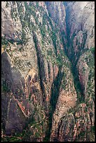 Distant view of Hidden Canyon with trail. Zion National Park ( color)