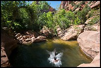Swimming hole, Pine Creek. Zion National Park ( color)