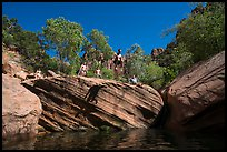 Jumping into water at swimming hole, Pine Creek. Zion National Park ( color)
