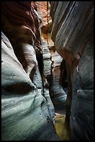 Tight squeeze, Upper Left Fork (Das Boot). Zion National Park ( color)