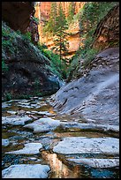Stream and canyon walls, Left Fork. Zion National Park ( color)