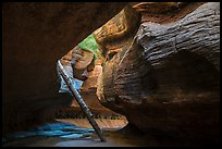 Log carried by flash floods, Upper Subway. Zion National Park ( color)