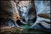 Pools and sculptured walls, Subway. Zion National Park ( color)