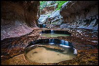 Left Fork flowing over pools, the Subway. Zion National Park ( color)