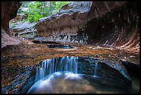 Cascades and pools, the Subway. Zion National Park ( color)