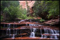 Archangel Falls in the spring. Zion National Park ( color)