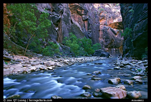 Virgin River in  Narrows. Zion National Park, Utah, USA.