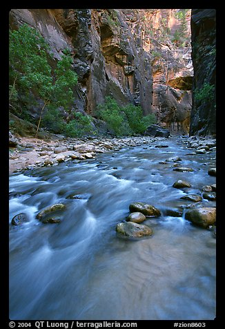Virgin River and steep canyon walls in the Narrows. Zion National Park, Utah, USA.