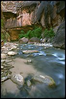 Rock alcove and Virgin River, the Narrows. Zion National Park, Utah, USA. (color)