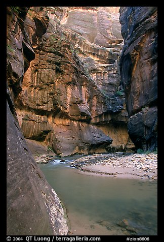 Bend of  Virgin Rivers in the Narrows. Zion National Park, Utah, USA.
