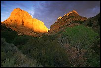 Kolob Canyons at sunset. Zion National Park, Utah, USA. (color)