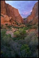 South Fork of Kolob Canyons at sunset. Zion National Park, Utah, USA.