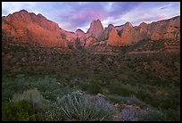 Panoramic view of Kolob Canyons at sunset. Zion National Park, Utah, USA.