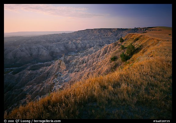 Prairie grasses and erosion canyon,  southern unit, sunrise. Badlands National Park (color)
