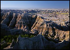 Mudstone with erosion ridges, sunrise. Badlands National Park, South Dakota, USA.