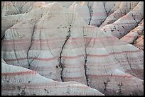 Paleosols fossil soils mixed with Brule Formation. Badlands National Park ( color)
