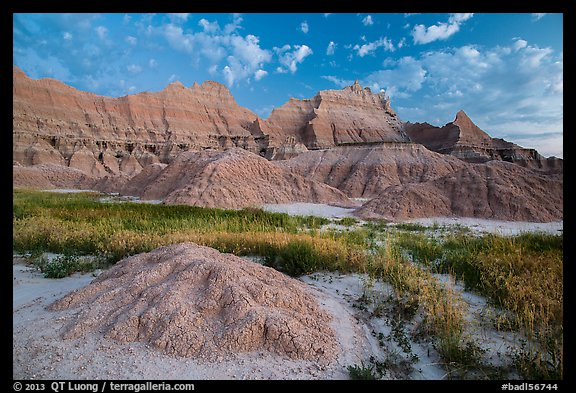 Grasses, cracked soil, and sharp peaks at dawn. Badlands National Park (color)
