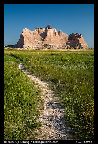Trail winding in prairie next to butte. Badlands National Park (color)