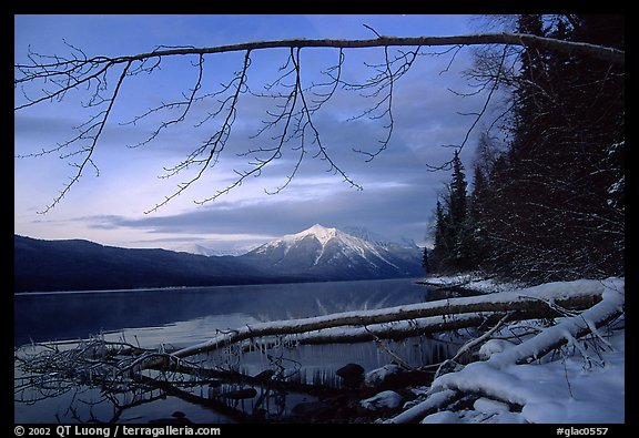 Shore of lake McDonald in winter. Glacier National Park, Montana, USA.