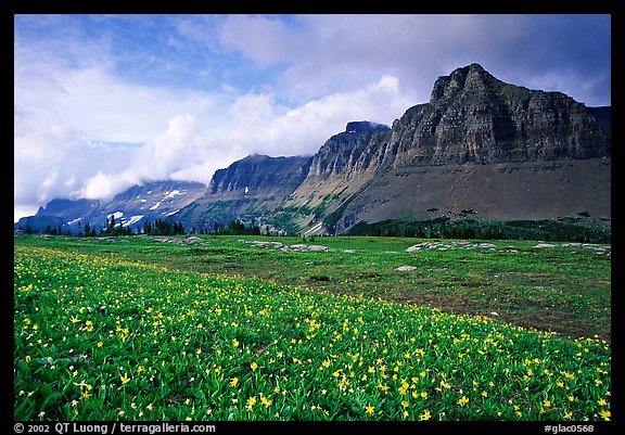 Garden wall from Logan pass. Glacier National Park (color)