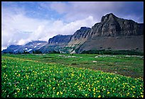 Garden wall from Logan pass. Glacier National Park, Montana, USA. (color)