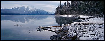Lake, snowy shore, and mountains in winter. Glacier National Park (Panoramic color)