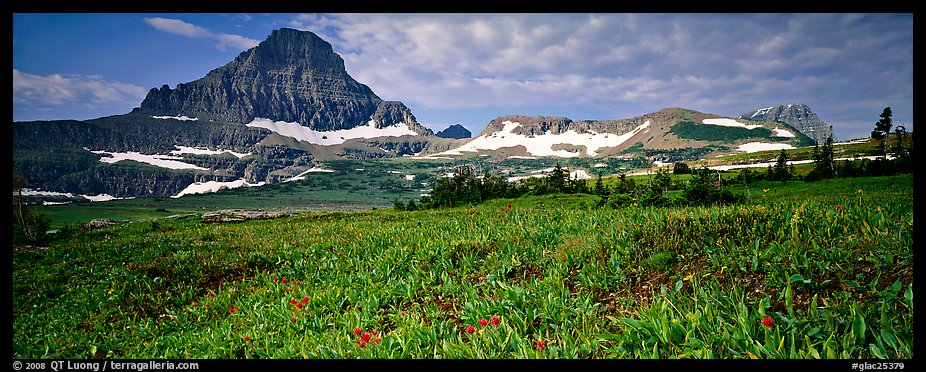 Alpine landscape with wildflower meadows and peak. Glacier National Park (color)