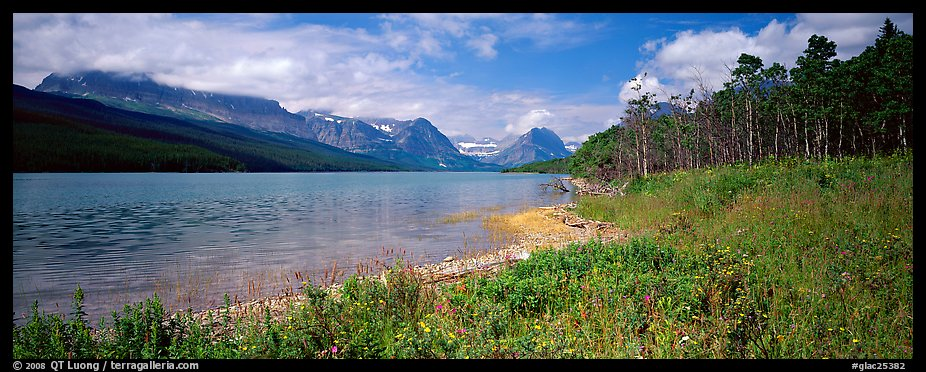 Mountain lake with wildflowers on shore. Glacier National Park (color)