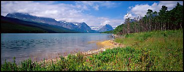 Mountain lake with wildflowers on shore. Glacier National Park, Montana, USA.