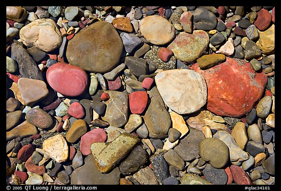 Colorful pebbles in a stream. Glacier National Park (color)