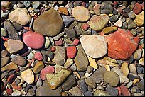 Colorful pebbles in a stream. Glacier National Park, Montana, USA.