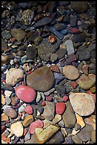 Colorful pebbles and shadow. Glacier National Park, Montana, USA.