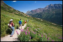 Group hiking on the Grinnell Glacier trail. Glacier National Park, Montana, USA. (color)