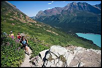 Women hiking on the Grinnell Glacier trail. Glacier National Park, Montana, USA. (color)