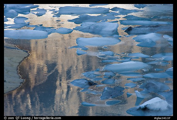Blue icebergs floating on reflections of rock wall, Upper Grinnel Lake, late afternoon. Glacier National Park (color)