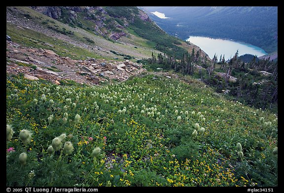 Bear Grass, Grinnell Lake and Josephine Lake. Glacier National Park, Montana, USA.